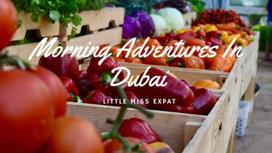 Morning Adventures in Dubai – Hidden Gems of Dubai