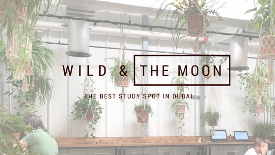 The perfect study spot – Wild & The Moon Dubai