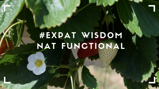 A Career Story – #ExpatWisdom – Nat Functional